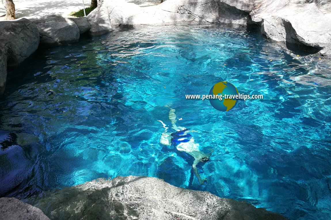 Aquakids Discovery