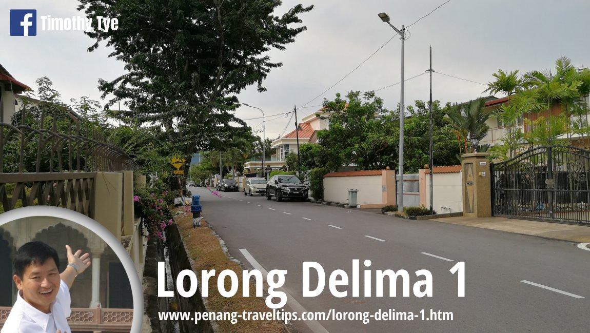 Lorong Delima 1, Island Glades