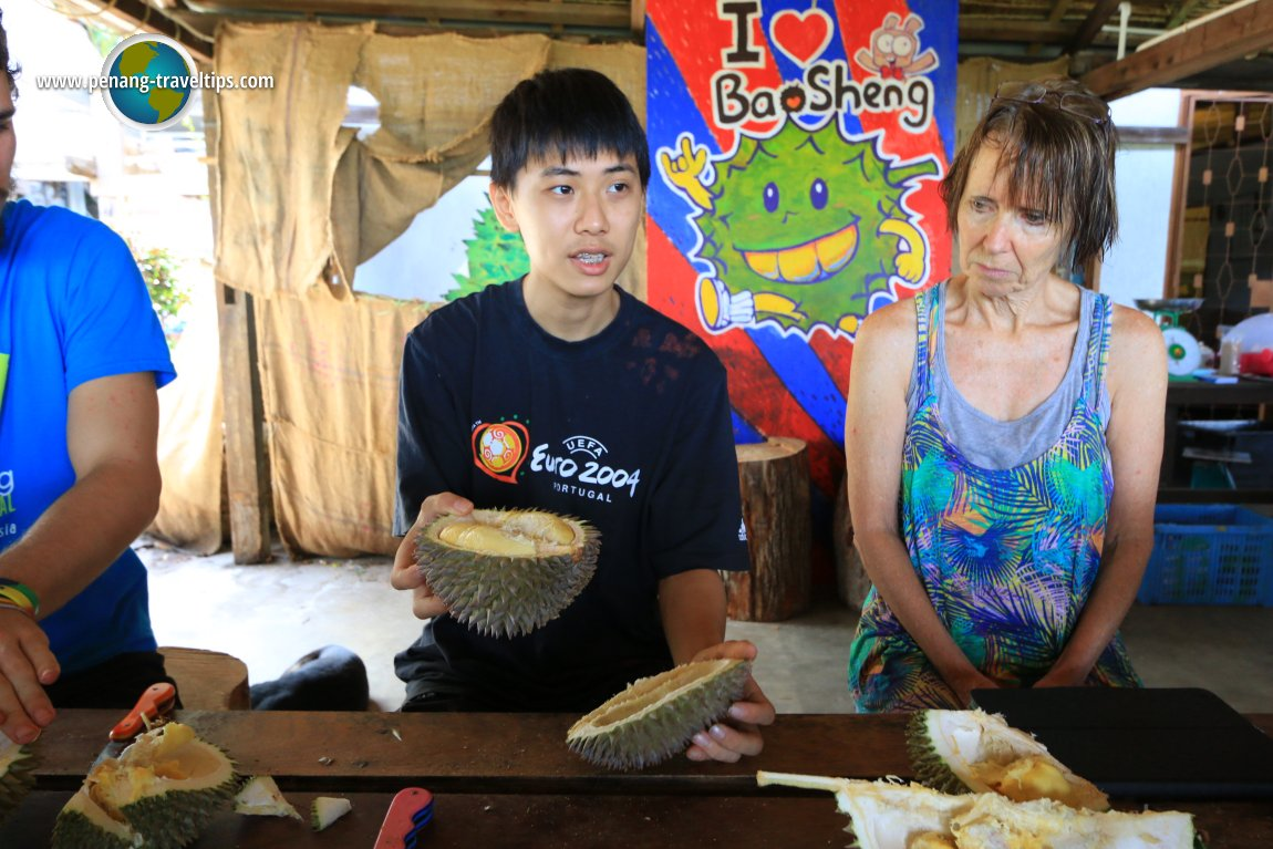 Bao Sheng Durian Farm
