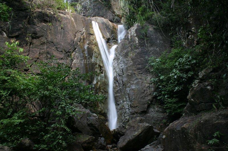 Botanic Gardens Waterfall's two main branches
