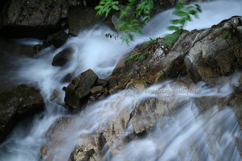 Botanic Gardens Waterfall torrents
