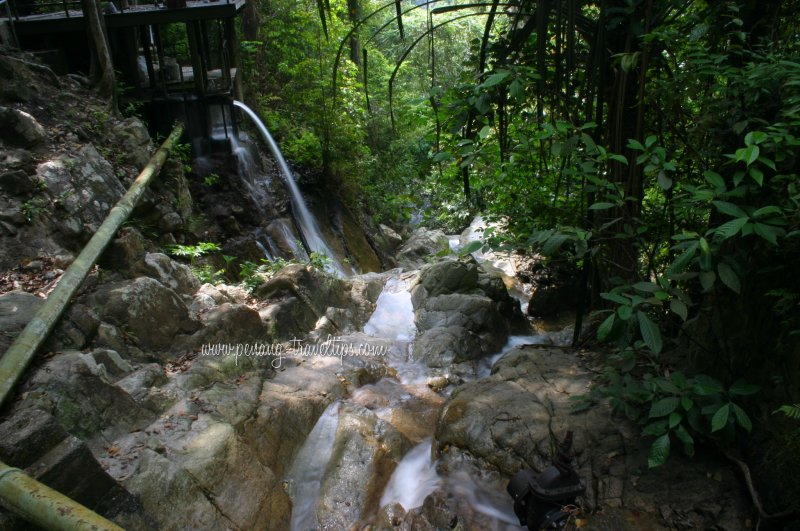 The Botanical Gardens Waterfall gushes down towards the river below