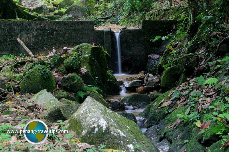 Bukit Mertajam Recreational Forest
