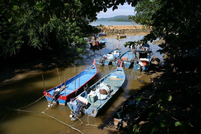 Estuary of Sungai Batu