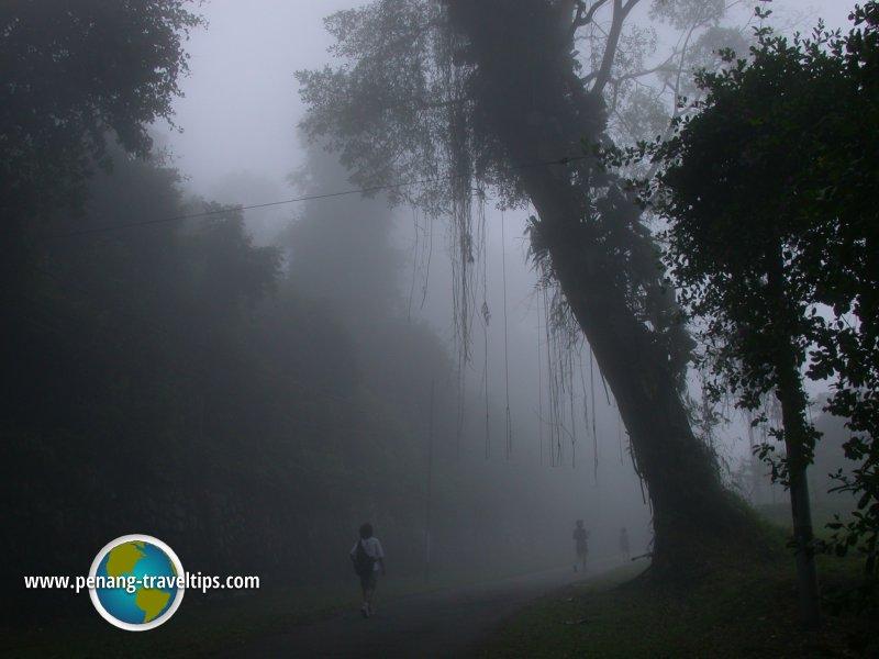 Misty Penang Hill