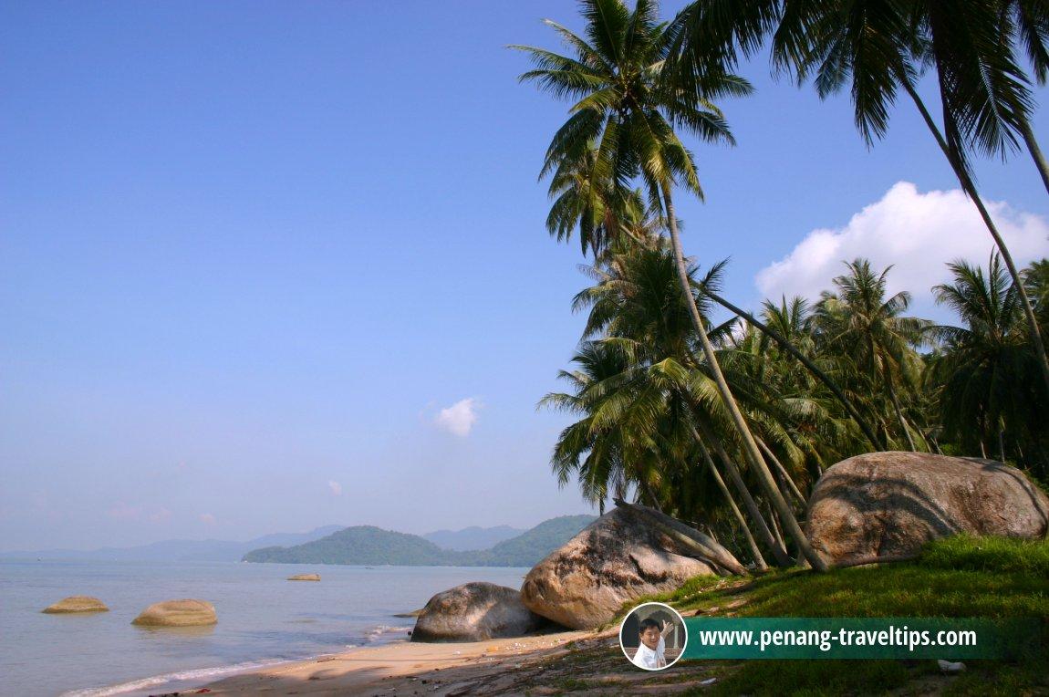 Pantai Ah Soon, Permatang Damar Laut
