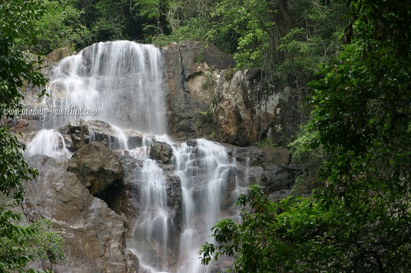 الاماكن السياحية penang-botanic-garde