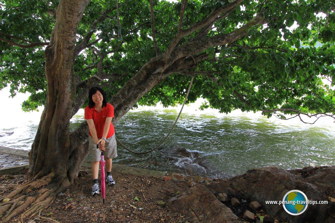 Goh Chooi Yoke in Pulau Aman