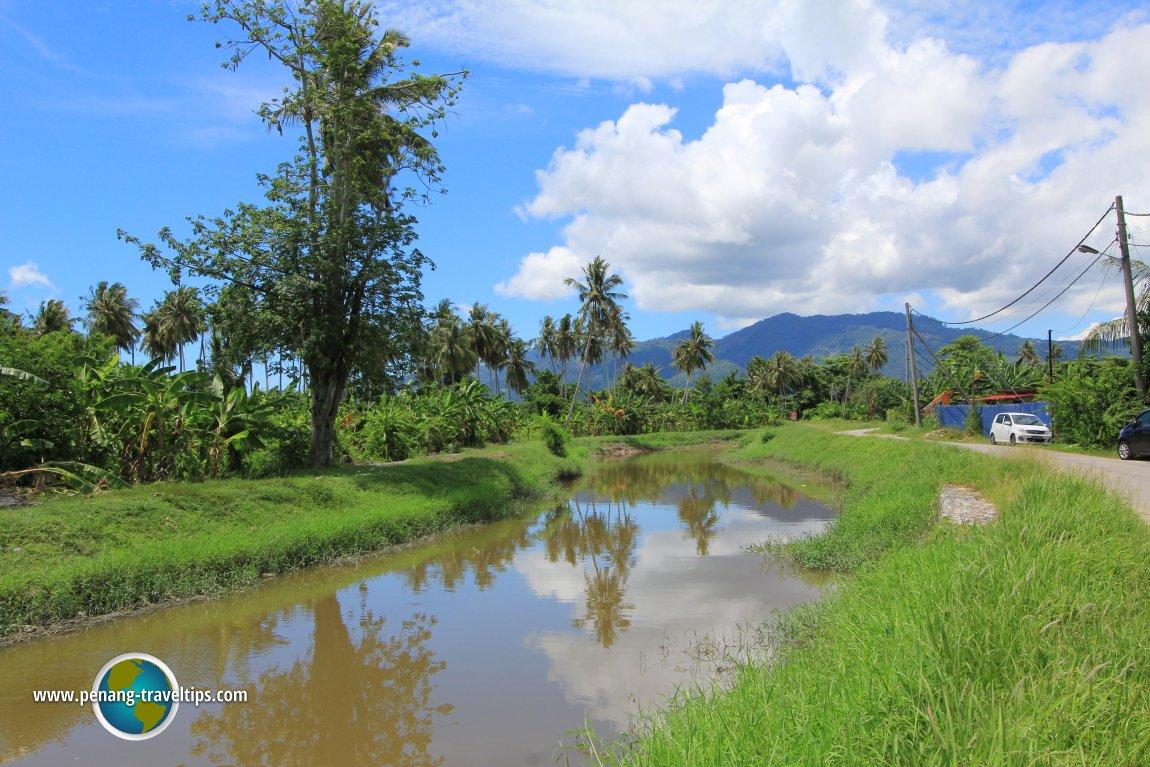 Sungai Burong scenery