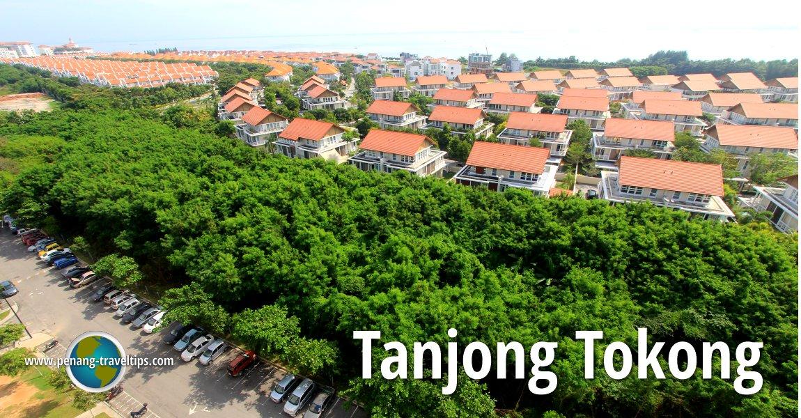 Tanjong Tokong