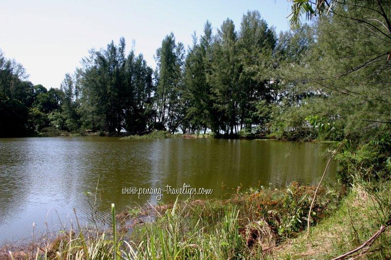 Tasik Teluk Bayu lakeside