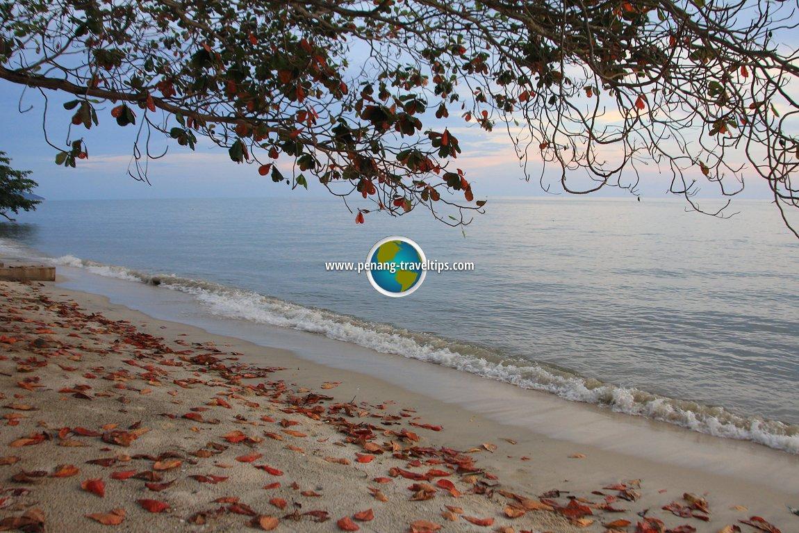 Teluk Kumbar Coast