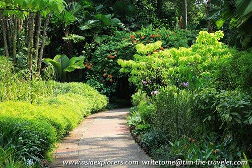 Garden path, Singapore Botanic Gardens