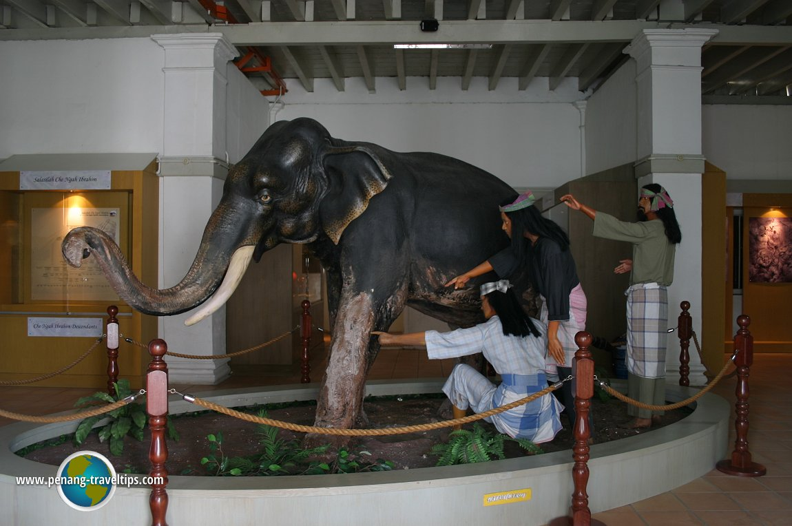 Larut, the Elephant