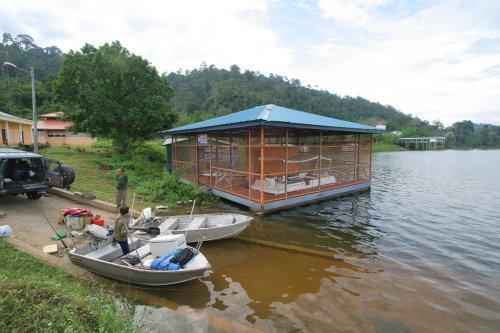 Boat Jetty, Temengor Lake