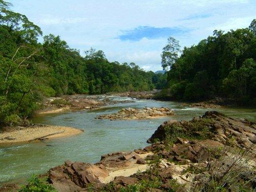 Kuala Jasin, Endau-Rompin National Park