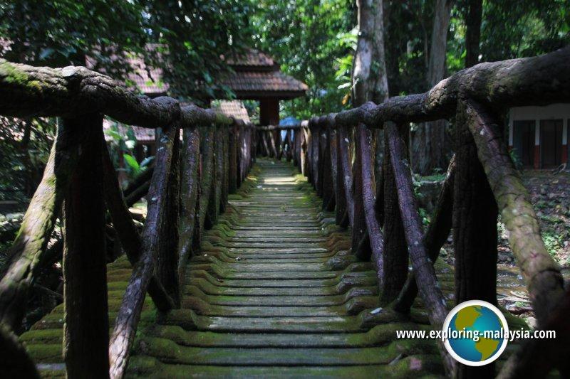 Batu Hampar Forest Reserve
