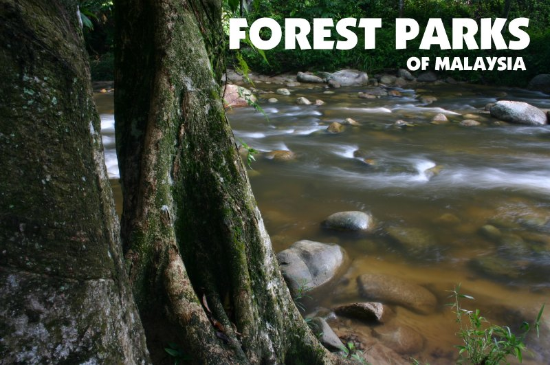 Forest Parks of Malaysia