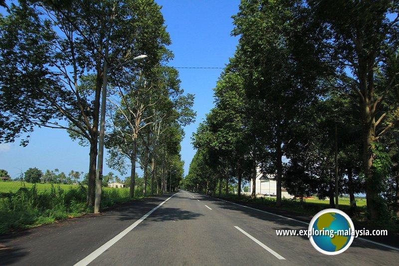 Jalan Guar Chempedak, Kedah