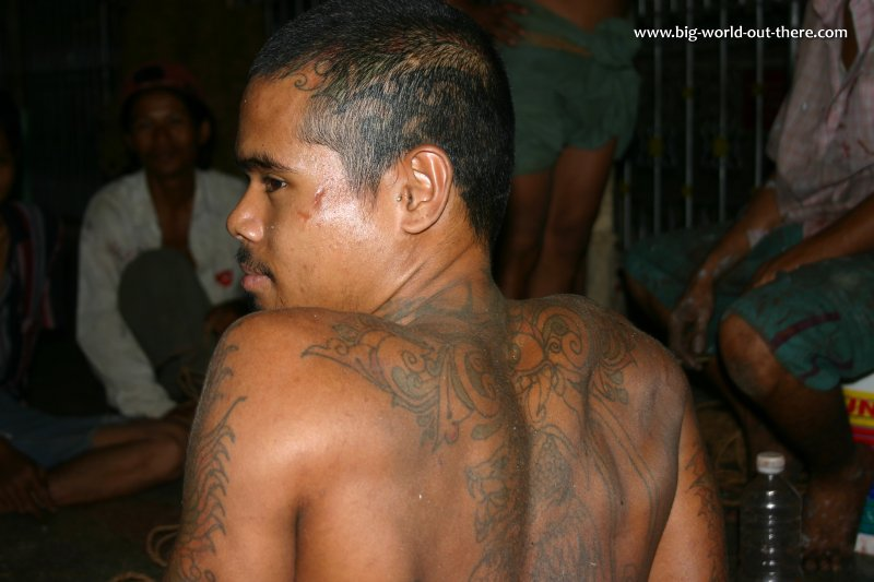 Burmese with tattoo