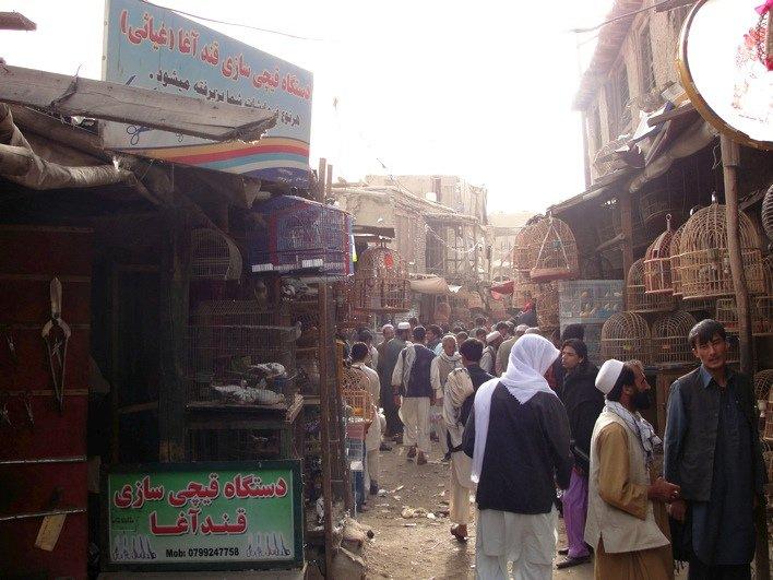 Bird Street, Kabul, Afghanistan