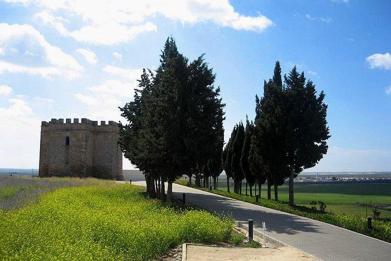 Castillo de Doña Blanca