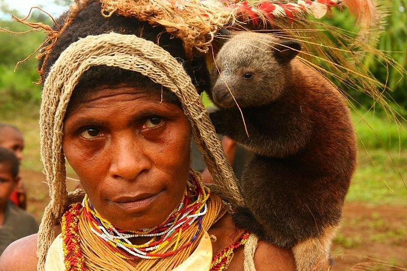 Chief's wife with tree kangaroo, Papua New Guinea