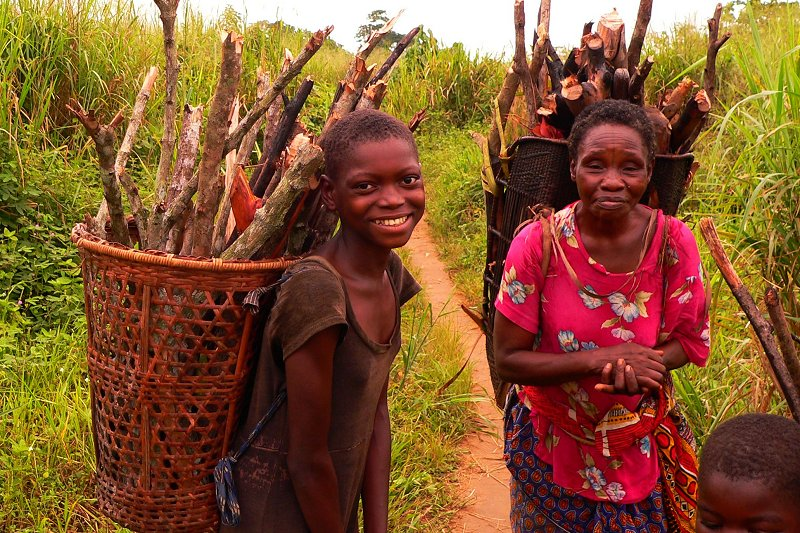 Collecting firewood in Basankusu