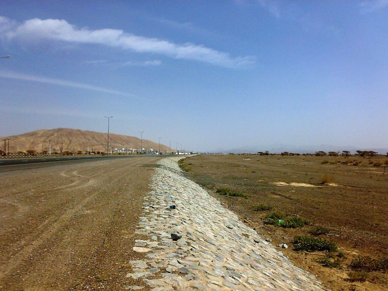 Desert landscape, UAE