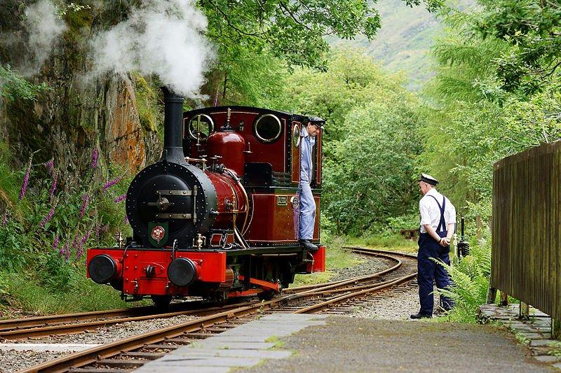 Dolgoch train