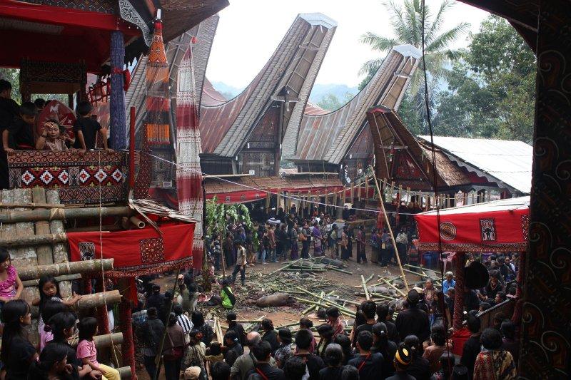 Funeral in Tana Toraja