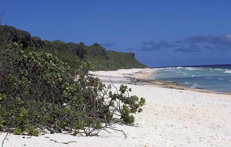Beach on Henderson Island in Pitcairn Group of Islands