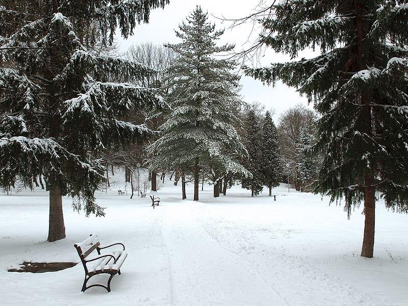 Park in Humenn&eeacute;, in eastern Slovakia, in winter