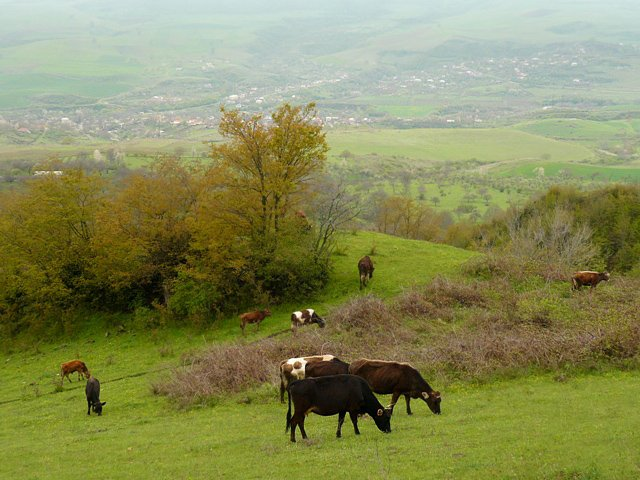 Scenery in Karmir Shuka, a village in Nagorno-Karabakh