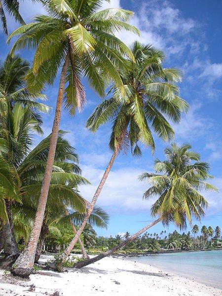 Lefaga village on Upolu Island, Samoa