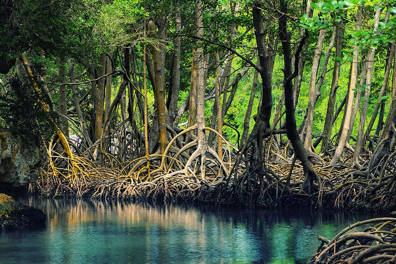Los Haitises National Park, Dominican Republic