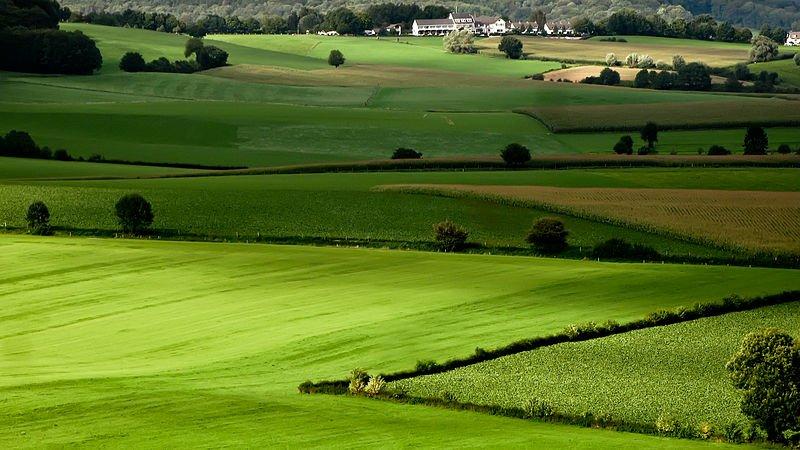 The farmland in Mergelland, Netherlands