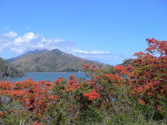 Mont Panie, New Caledonia