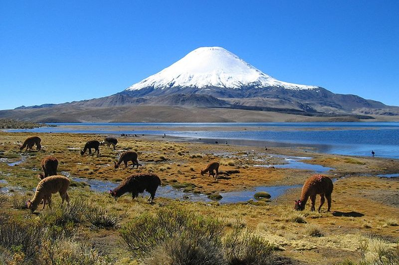 Parinacota Volcano, Chile