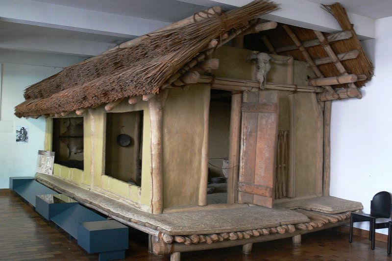 Pile dwelling replica