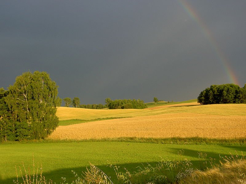 Landscape in the village of Tauroszyszki, Poland