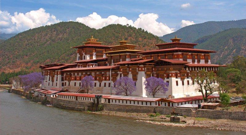 Punakha Dzong in spring