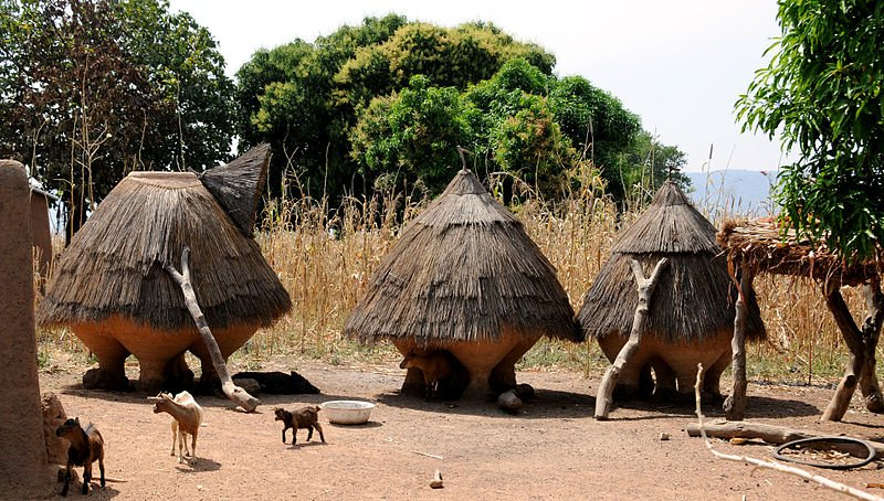 Thatch huts, Benin