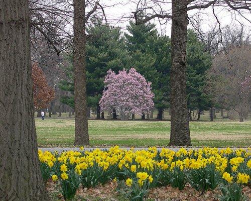 Tower Grove Park, St Louis