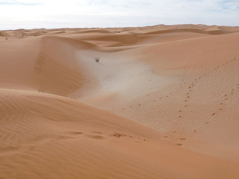 Sand dunes of Adrar, Mauritania