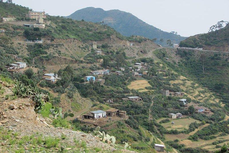 Shegirini in Eritrea
