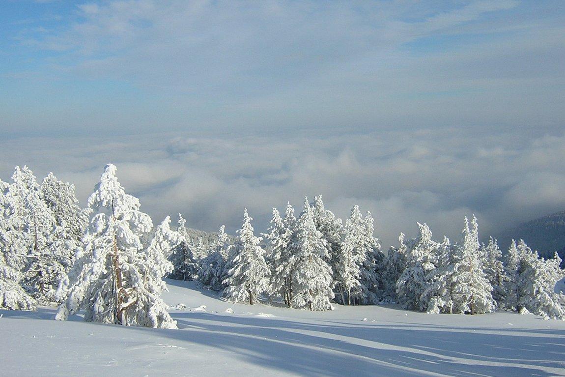 View from Vitosha