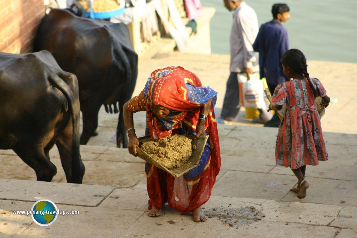 Dung collector, Varanasi