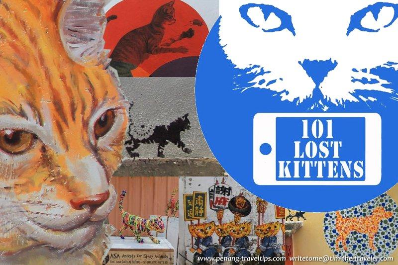 101 Lost Kittens