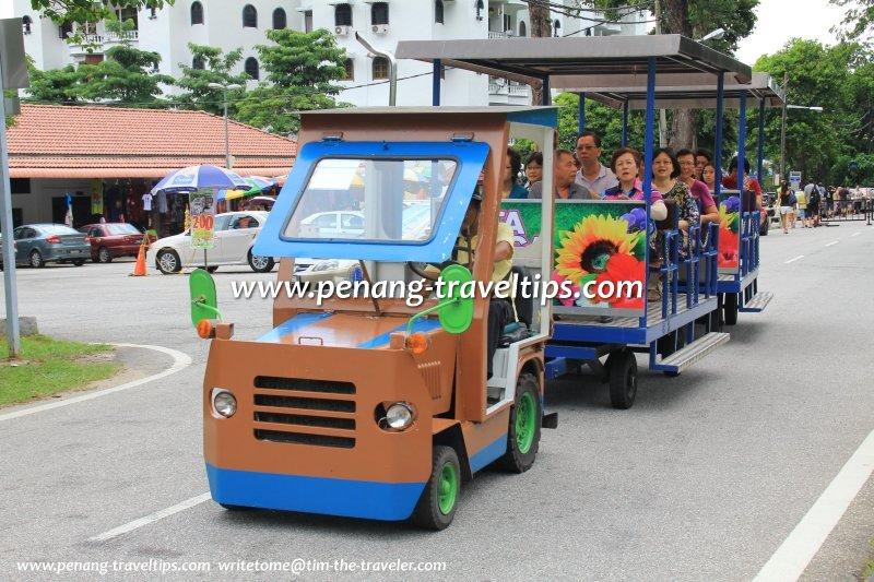 Botanic Gardens Tram Service